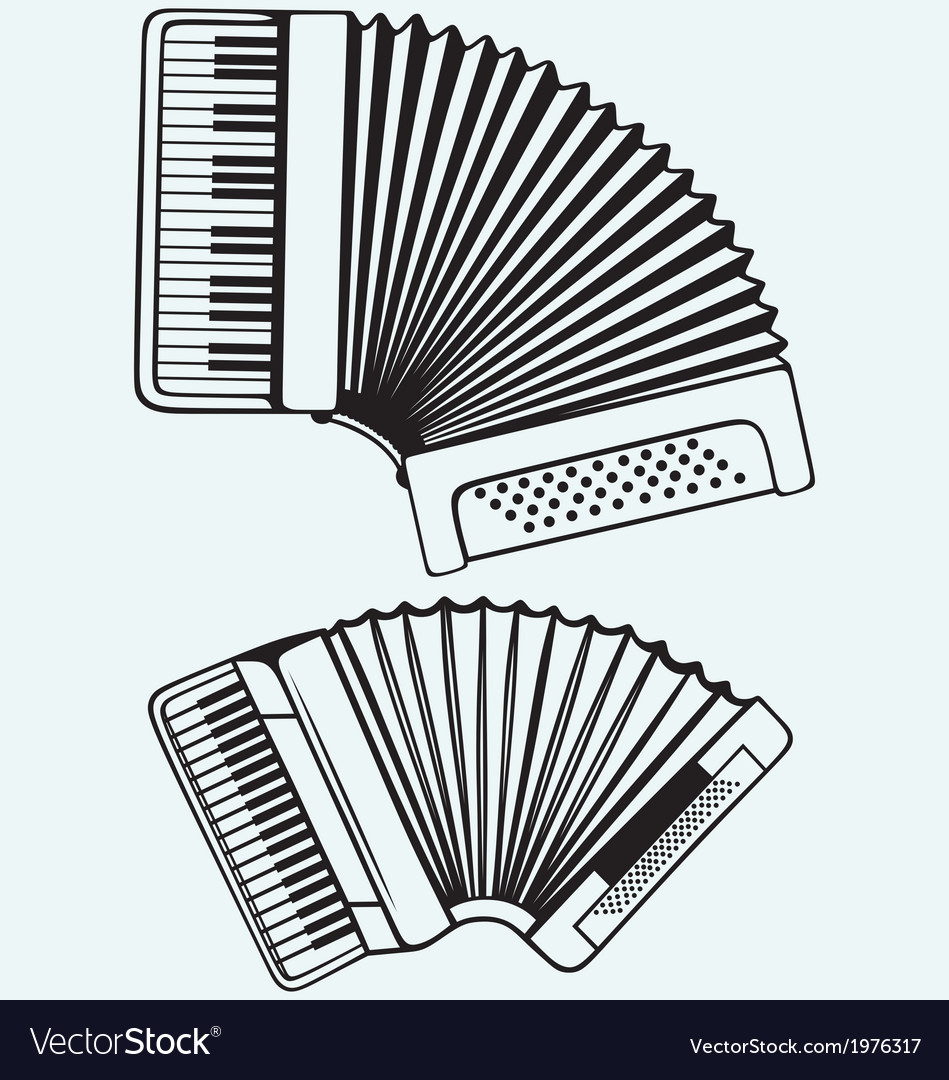 Music instruments accordion vector