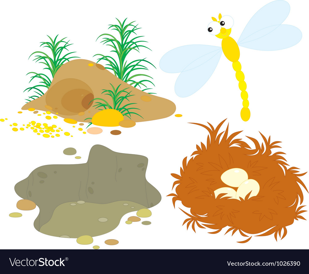 Hole pit nest and dragonfly vector