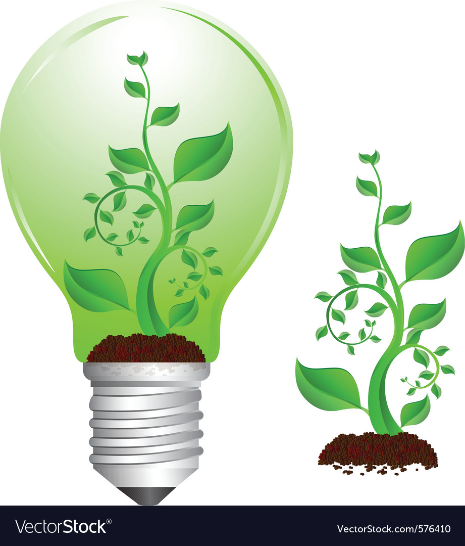 Bulb and plant vector