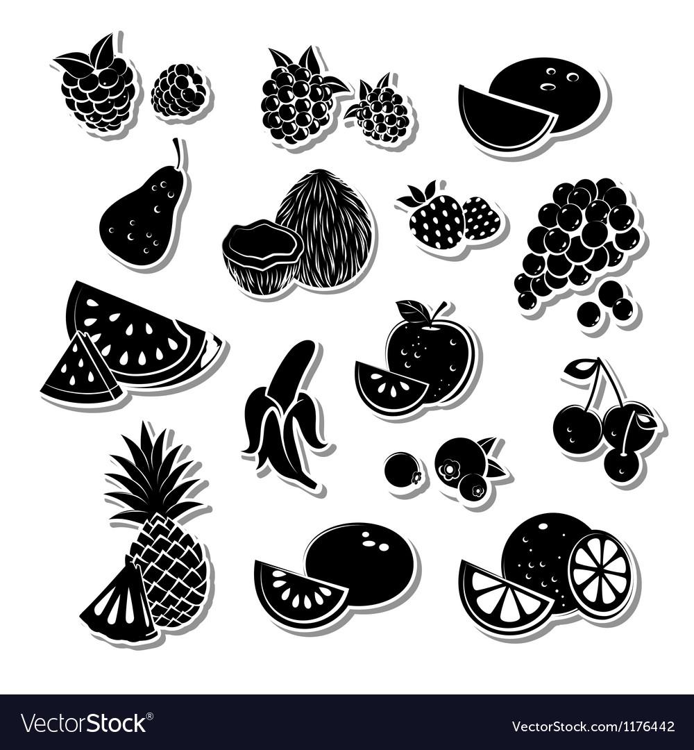 Retro fruit set vector