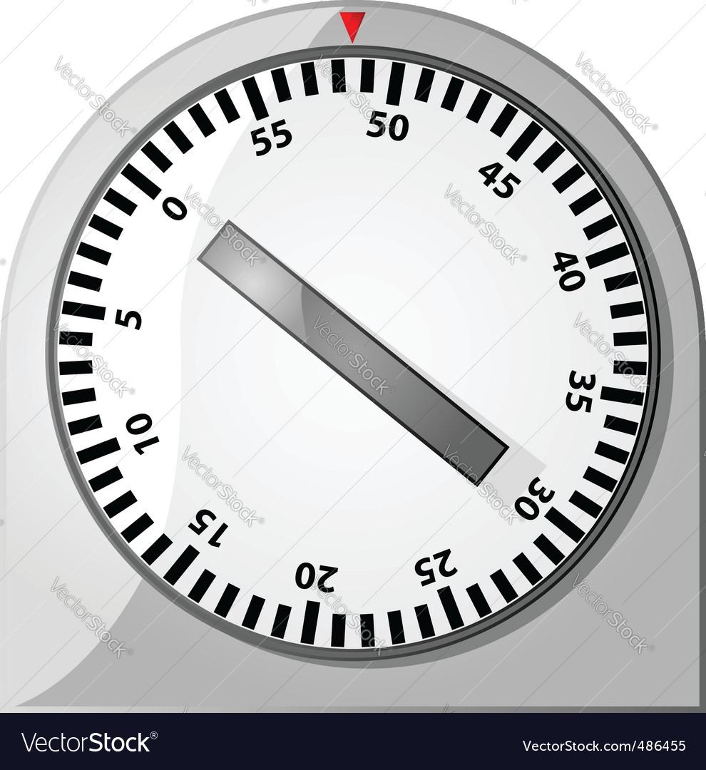 Analog timer vector