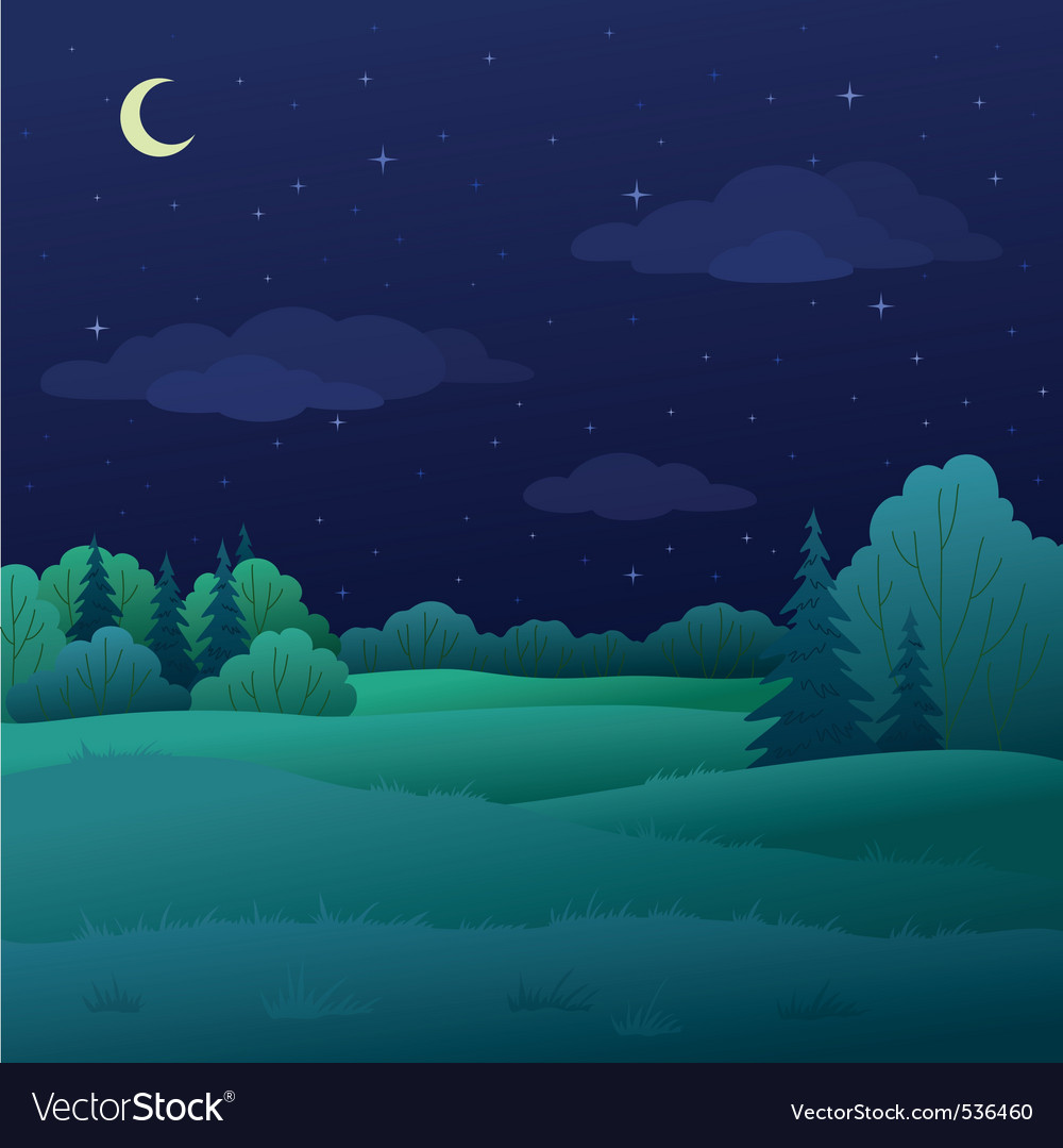 Landscape night summer forest vector