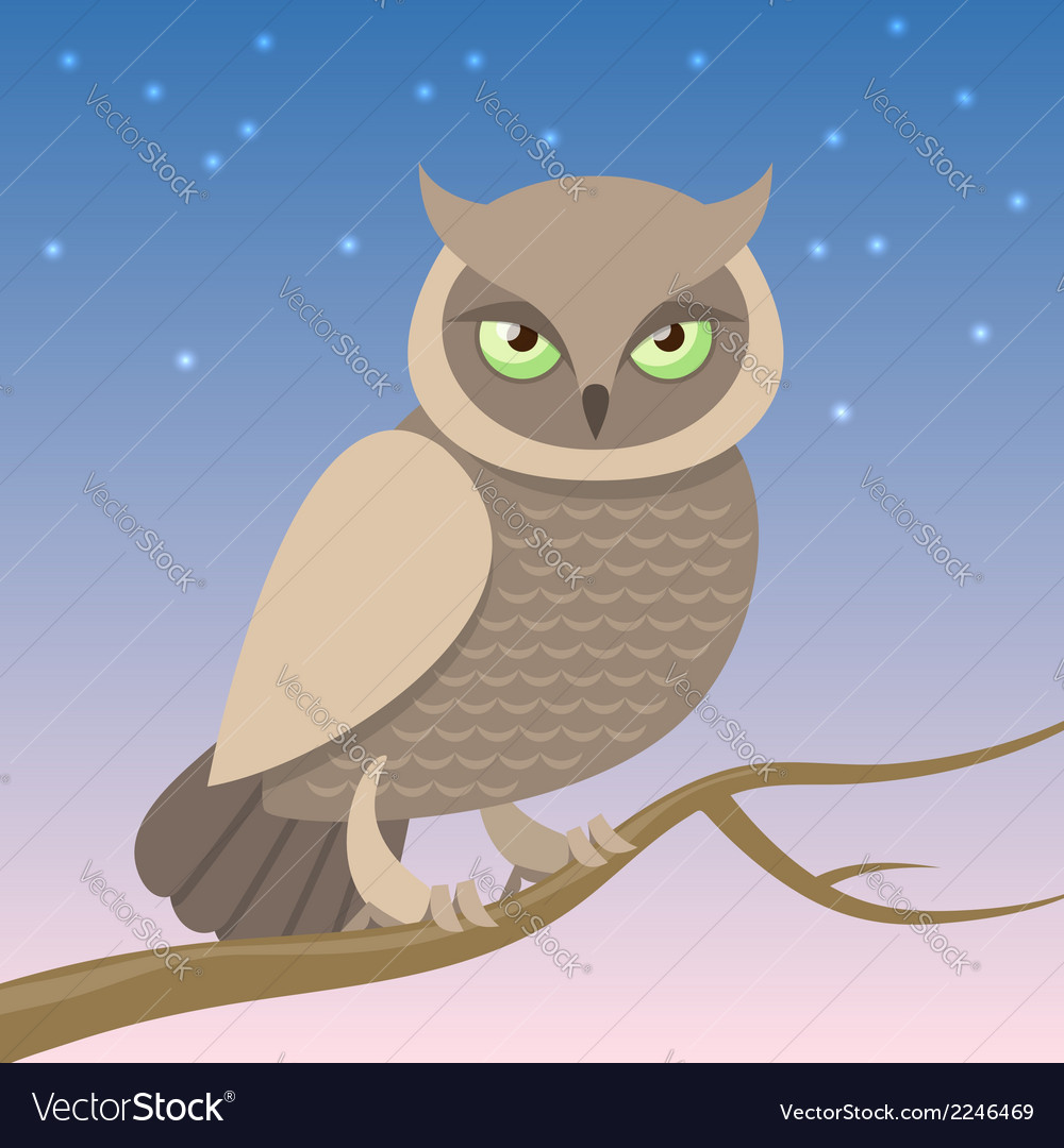 Owl on a branch vector