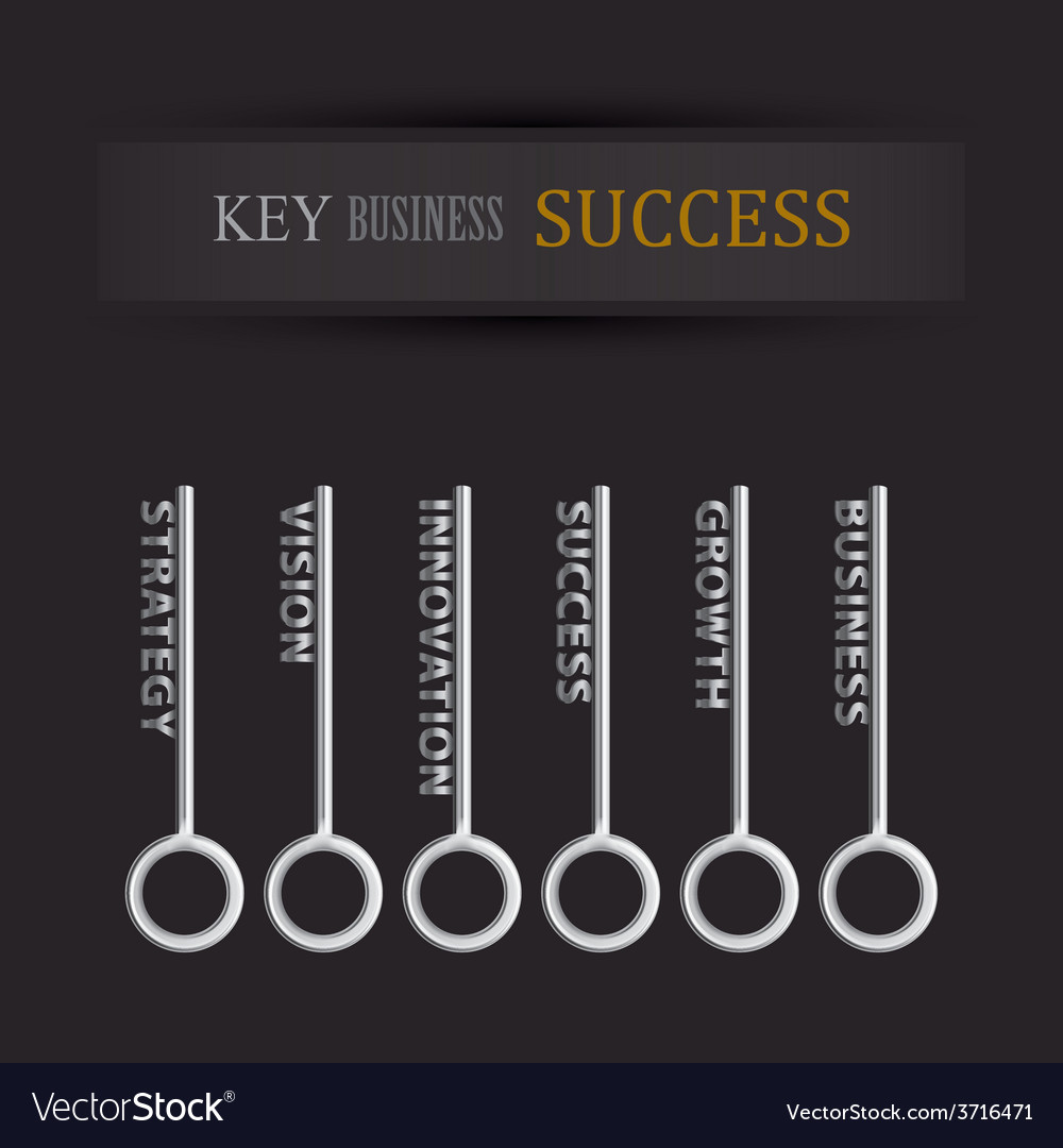 Set of key for business success vector
