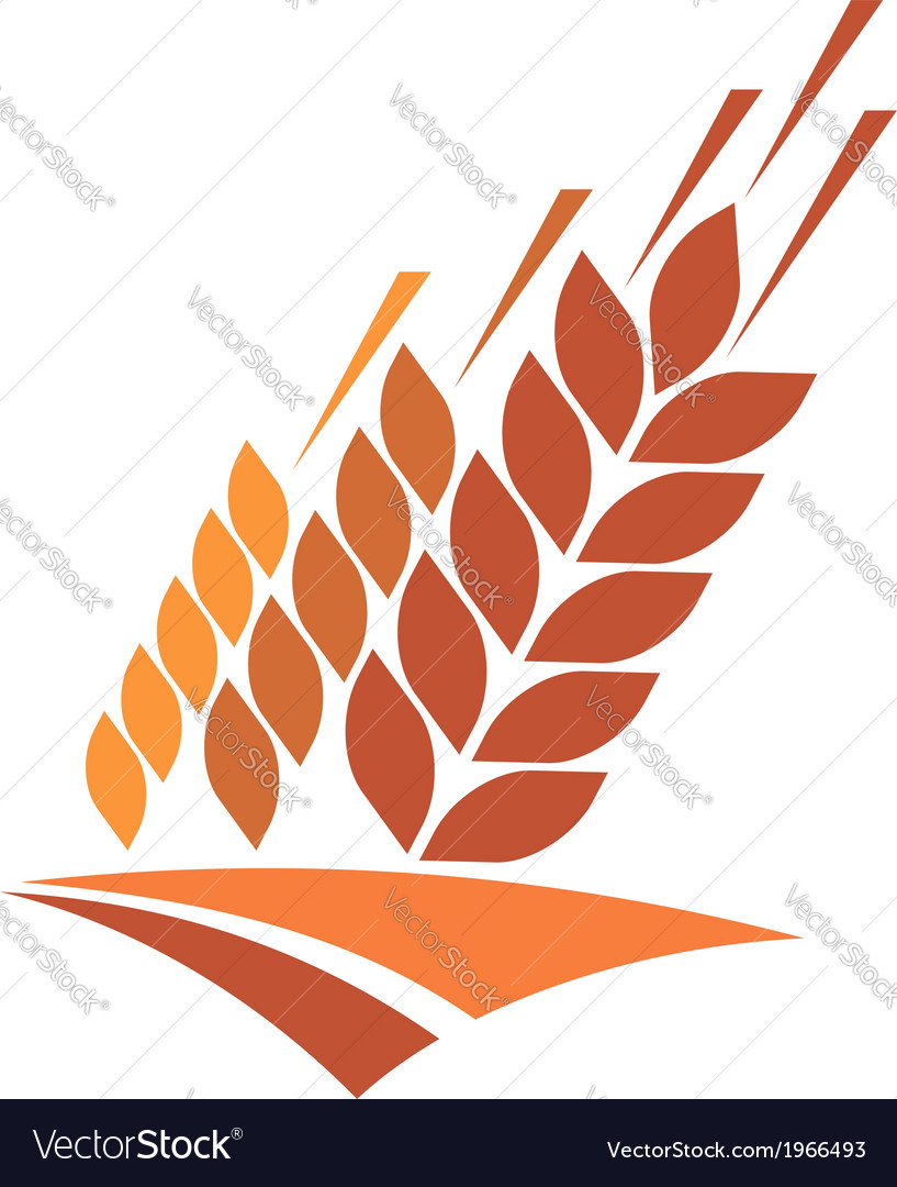 Agriculture icon with a field of golden wheat vector