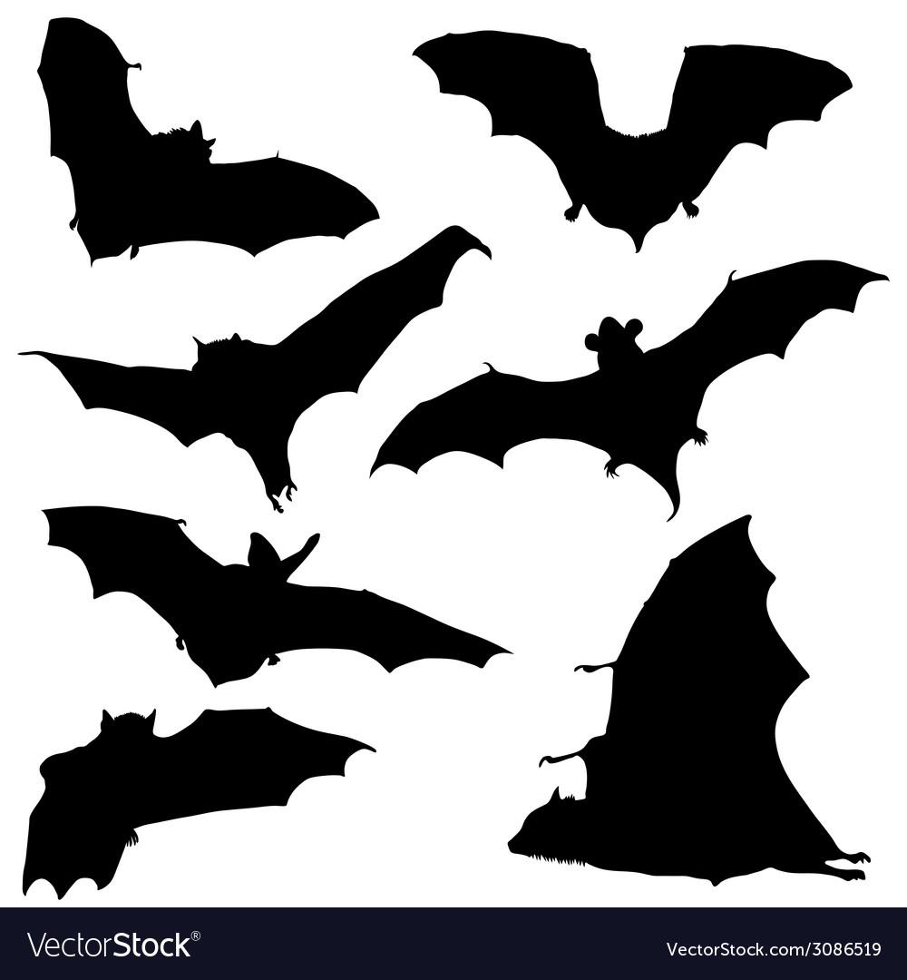 Bat black silhouette vector