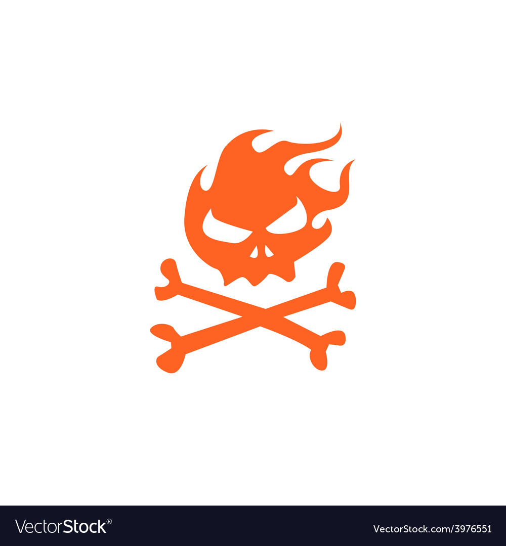 Fire skull and bones vector