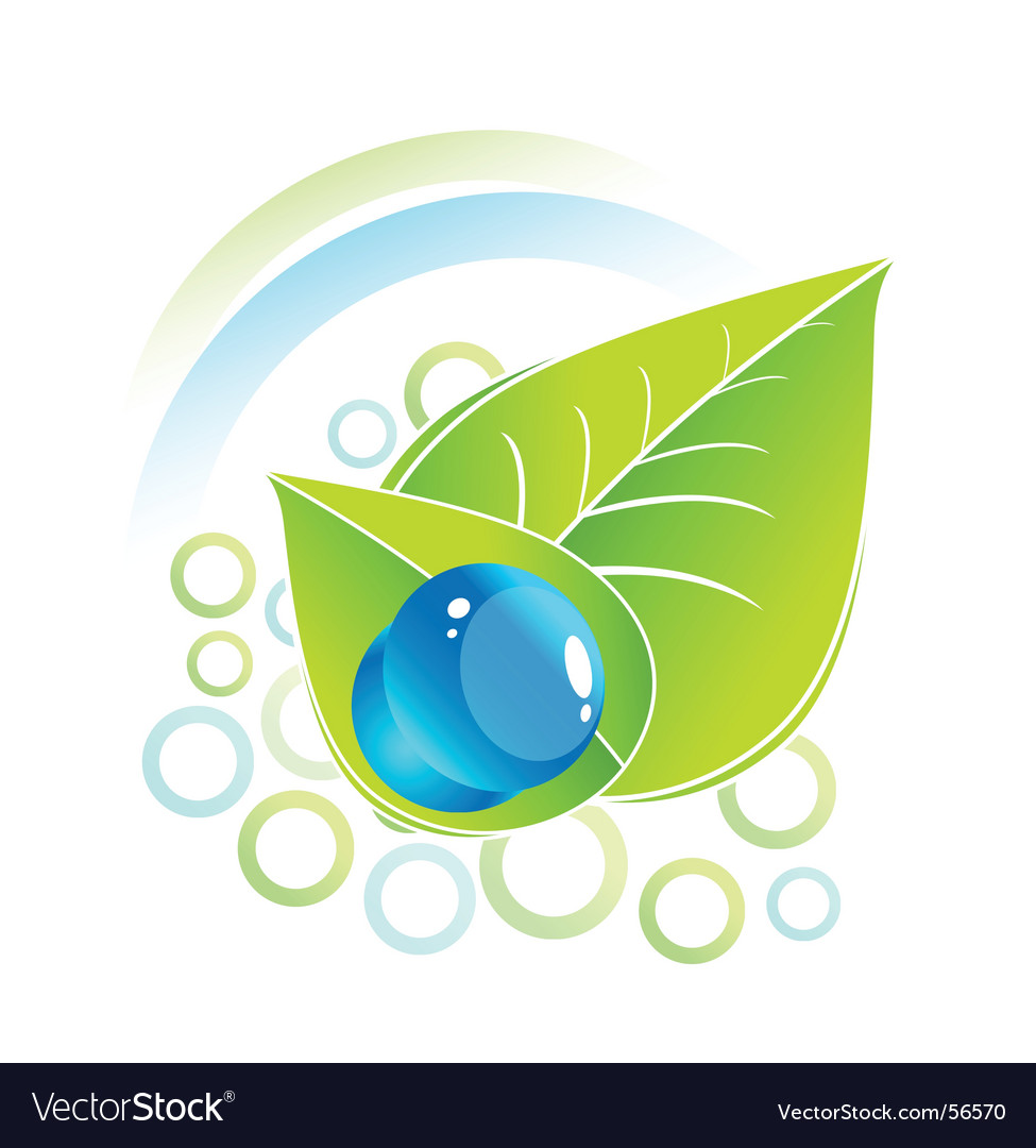 Leaf and nature vector