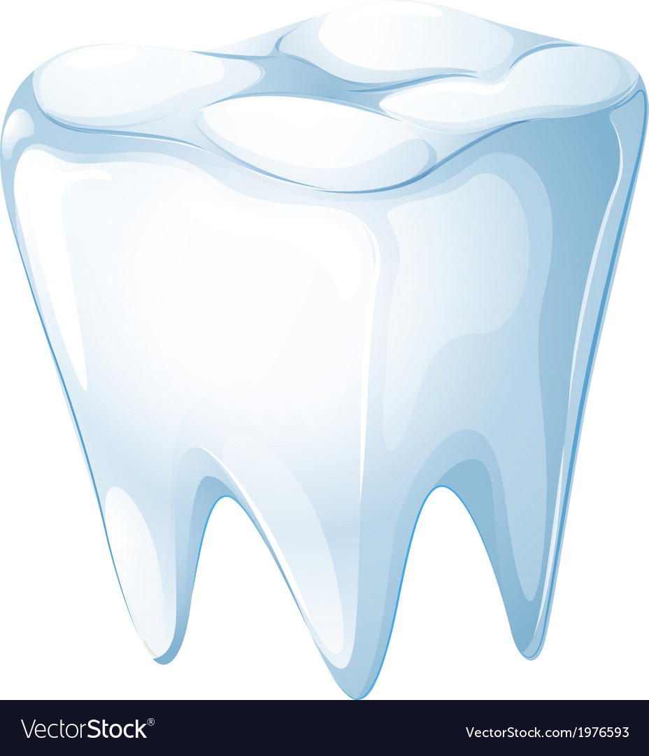 A tooth vector