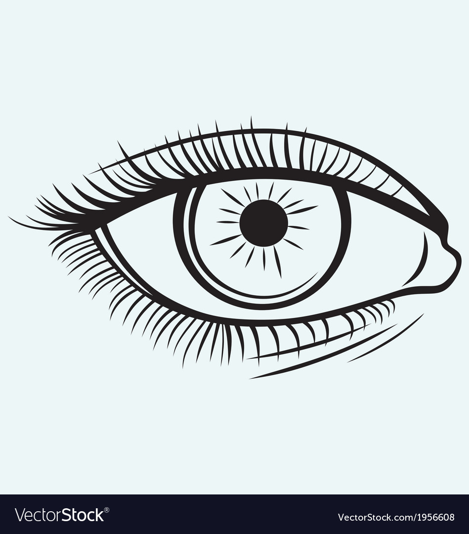 Silhouette of a female eye vector