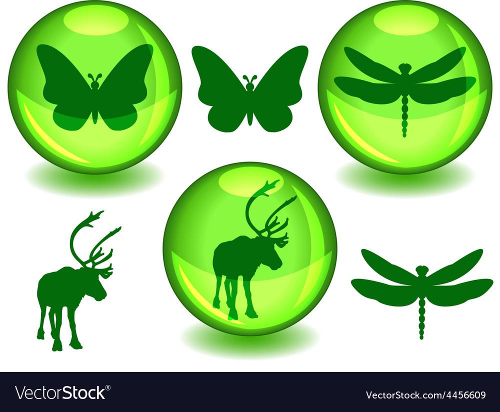 Bio or eco spheres vector