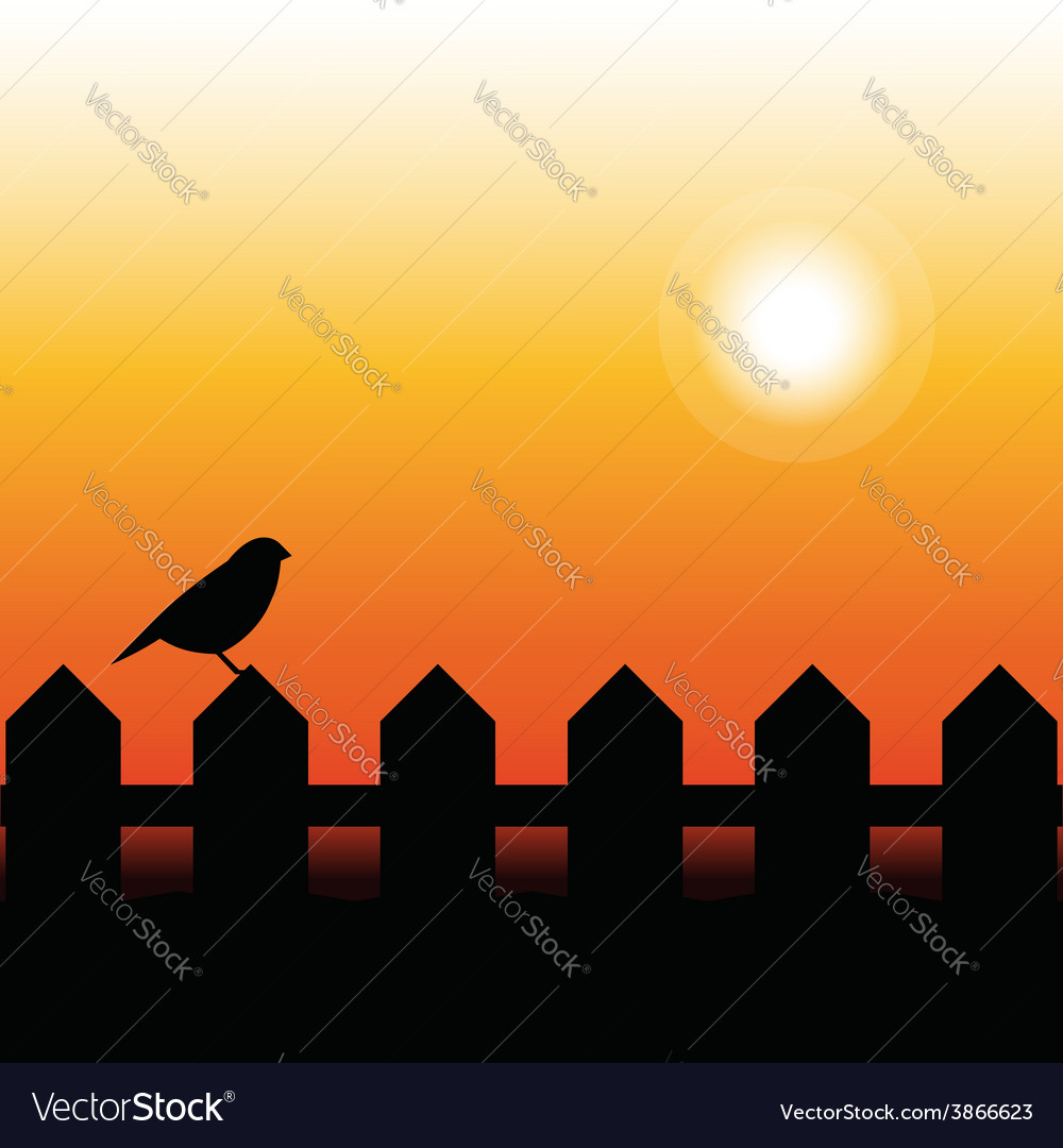 Bird silhouette on a fence in sunset vector