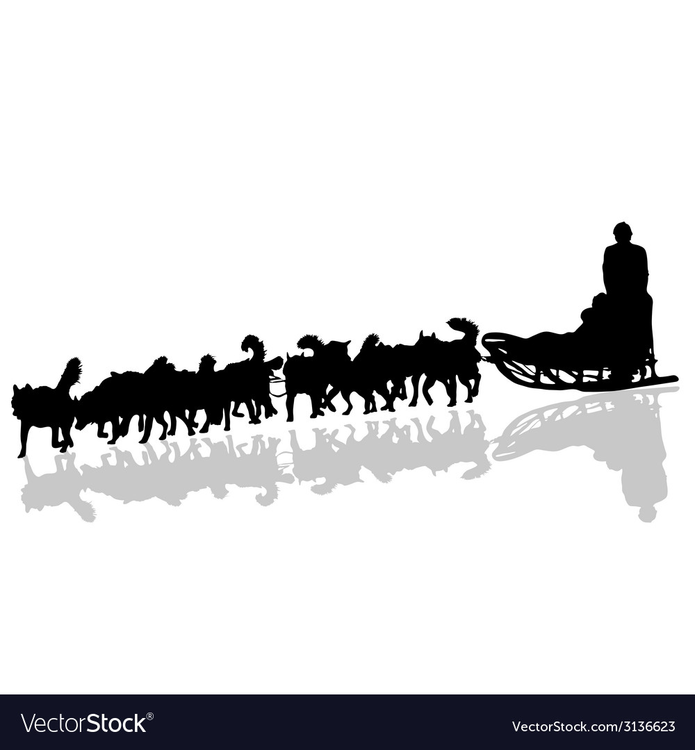 Dogs pulling a sled in black silhouette vector