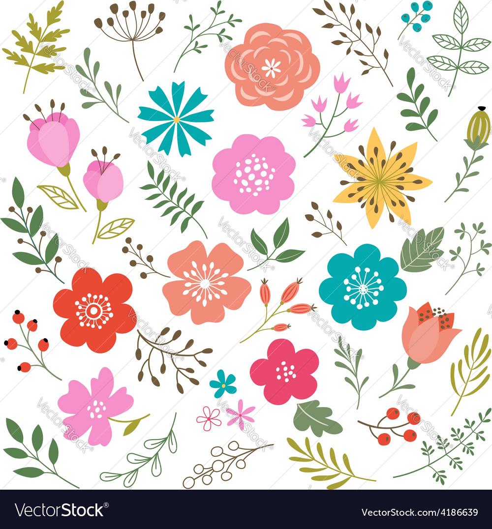 Set of floral elements vector