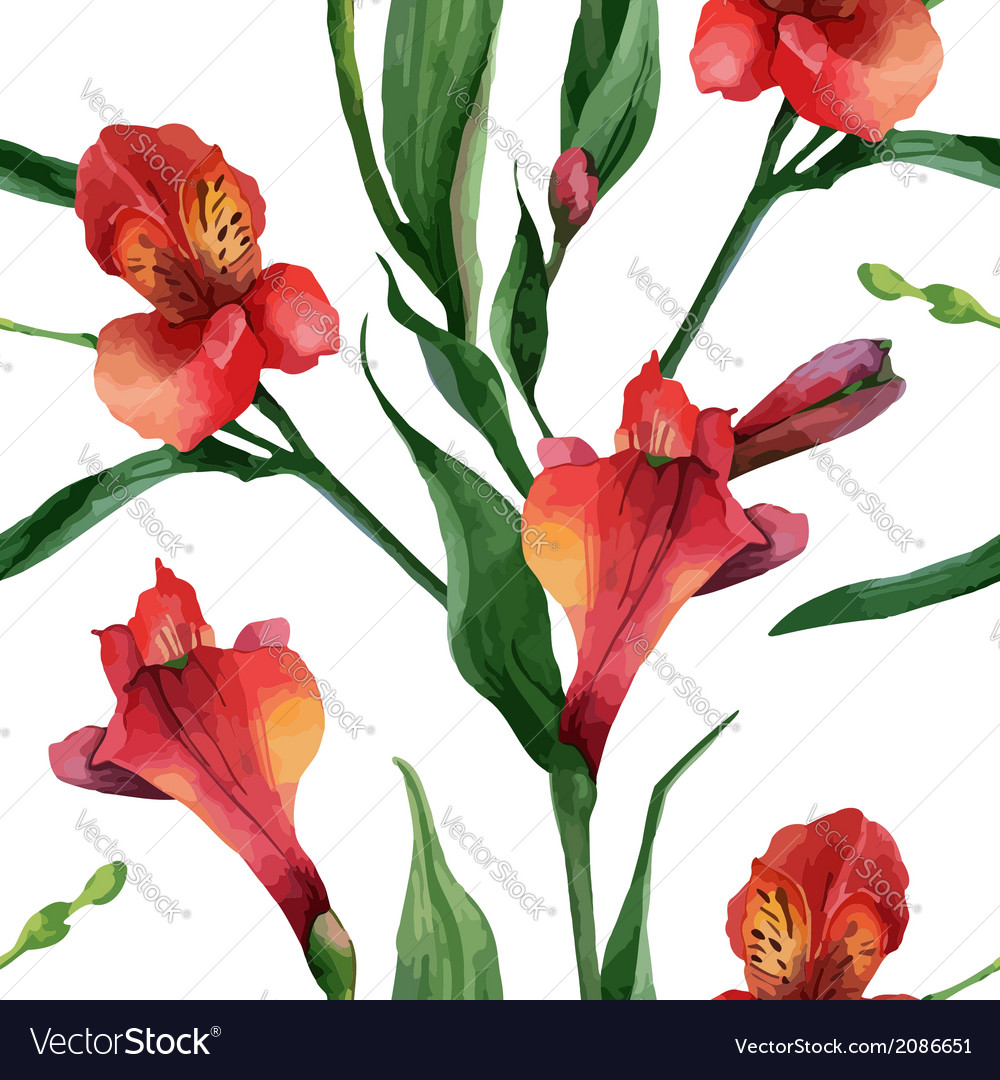 Floral pattern watercolor seamless background red vector