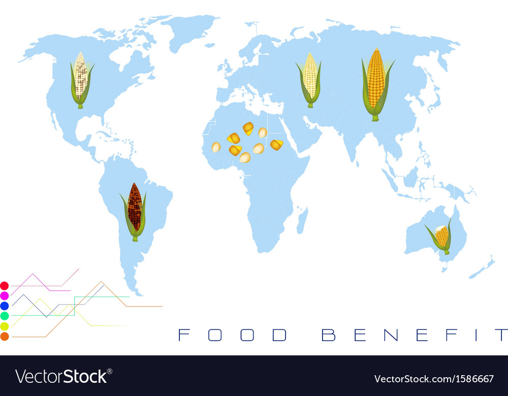 World map with corn production and consumption vector