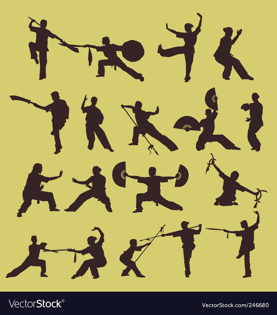 Wushu chinese martial art vector