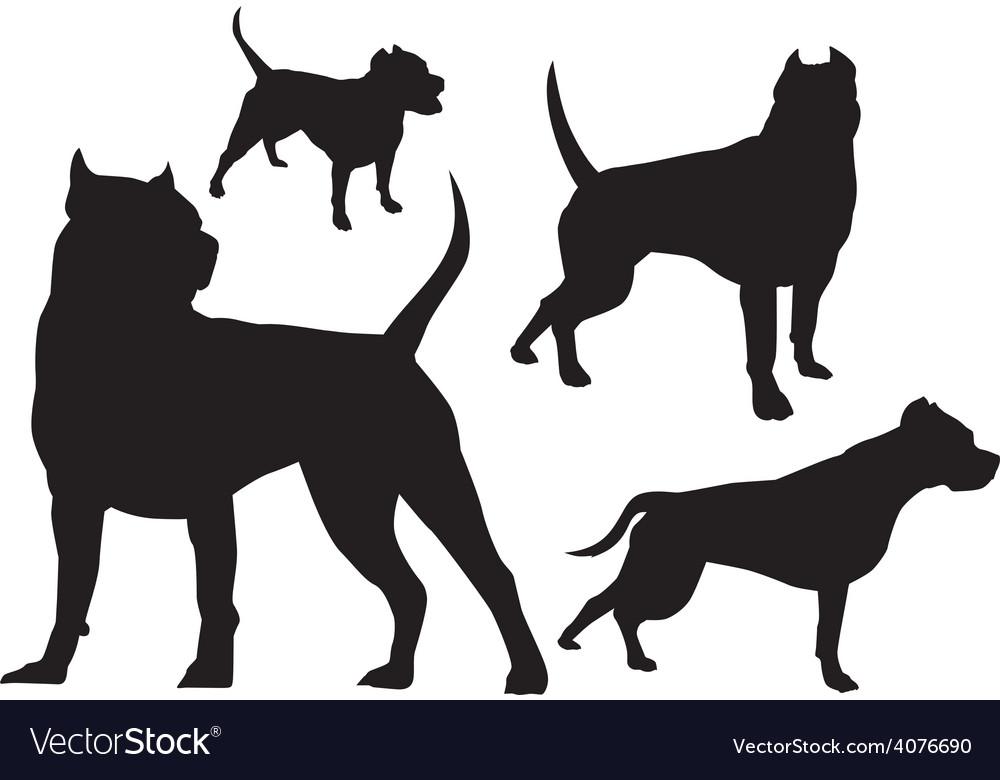 Amstaff silhouette logo vector