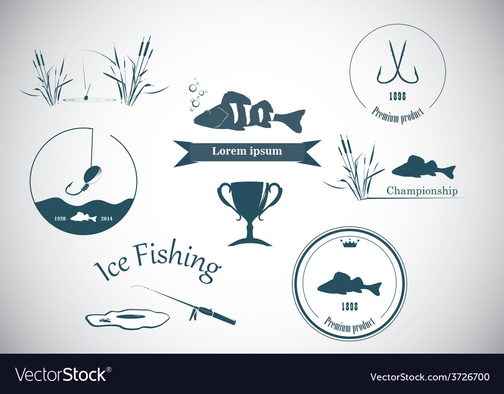 Fishing labels and design elements vector