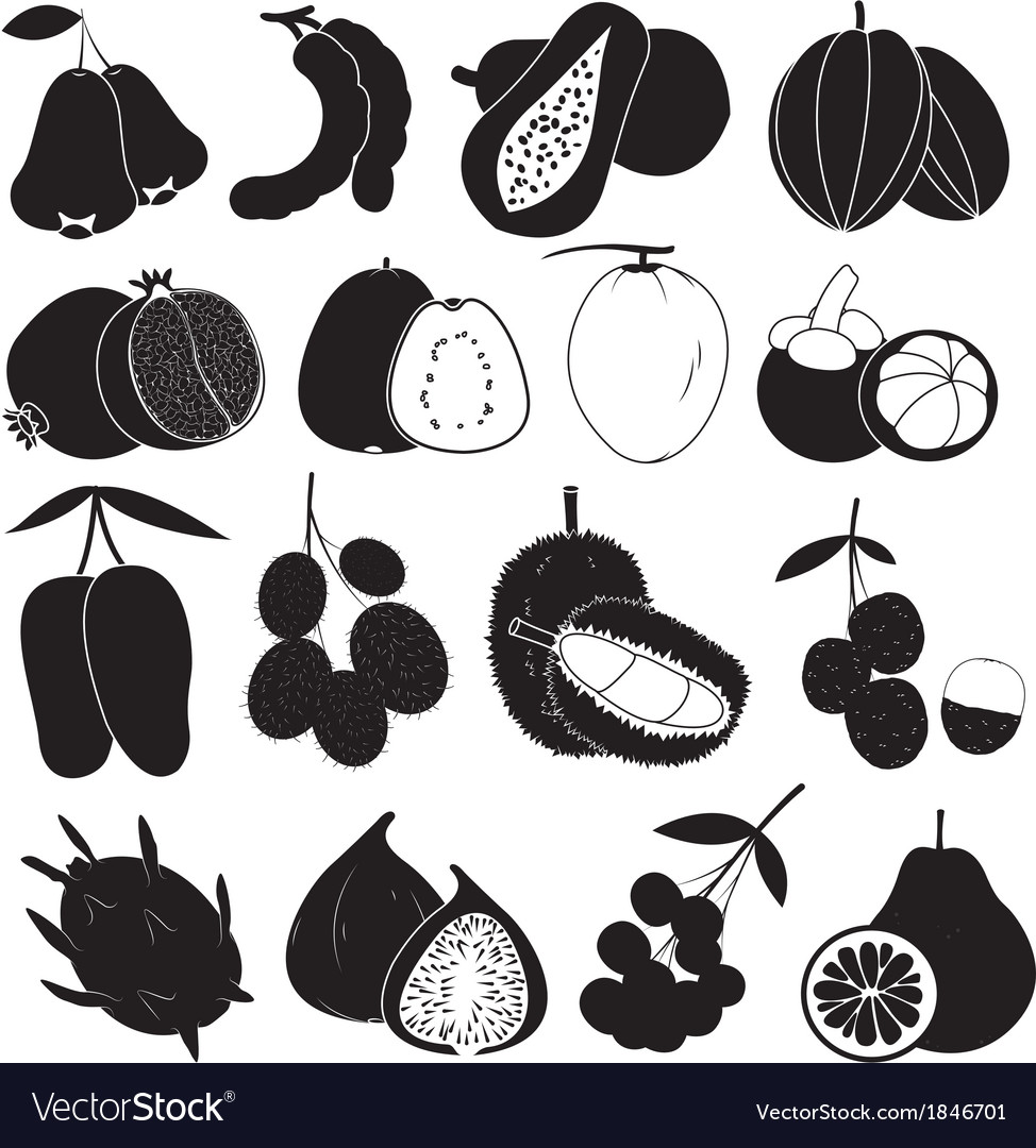 Tropical fruits set vector