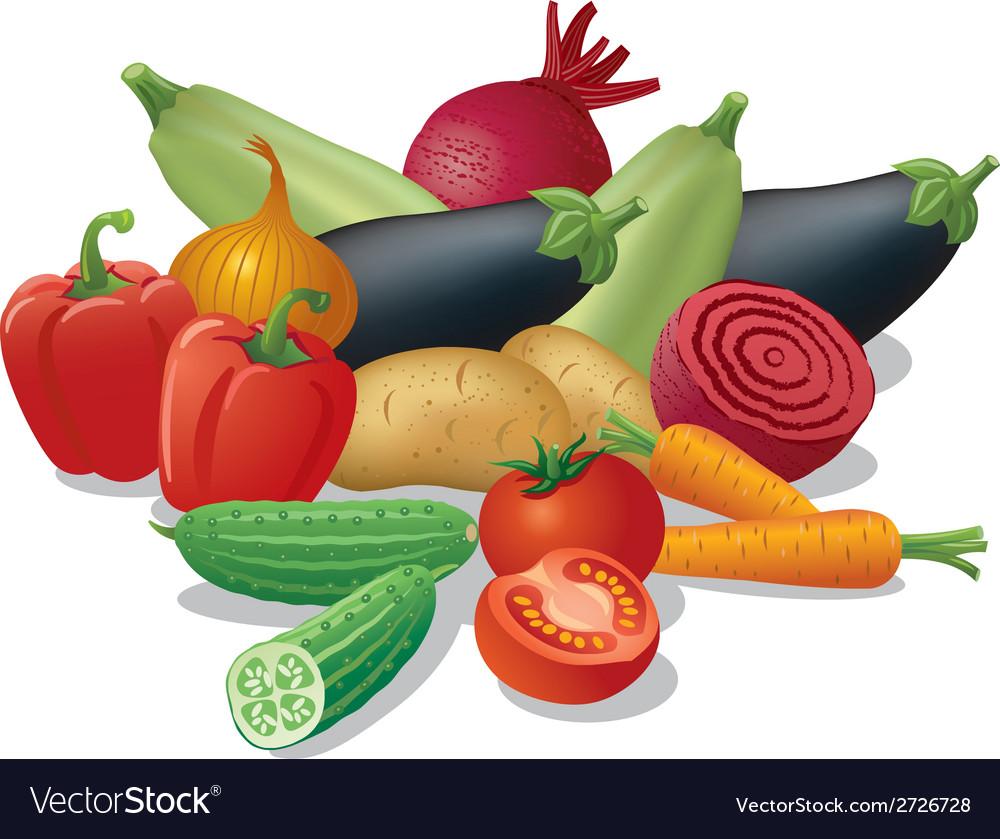 Vegetables harvest vector