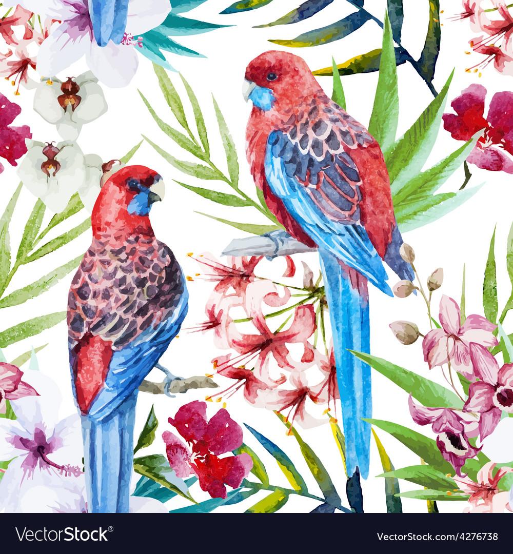 Rosella bird pattern vector
