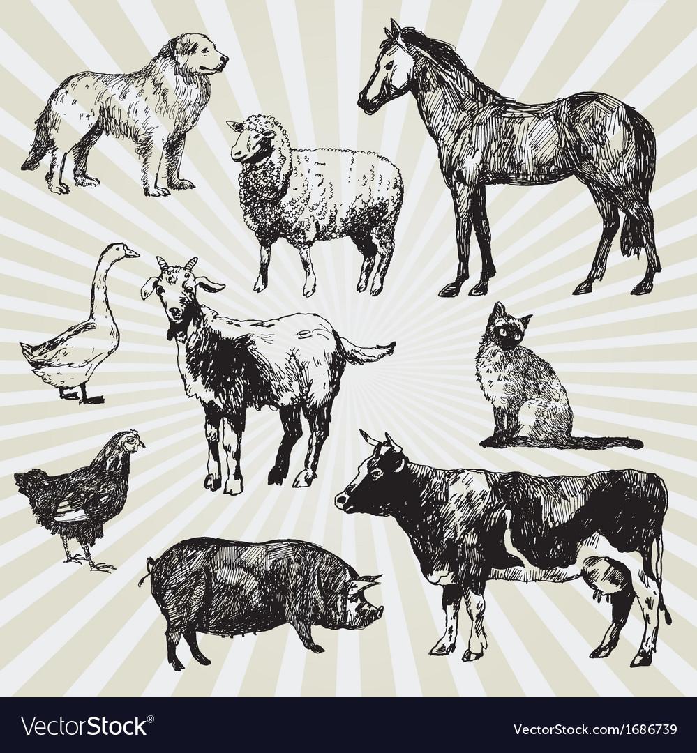 Home animals vector