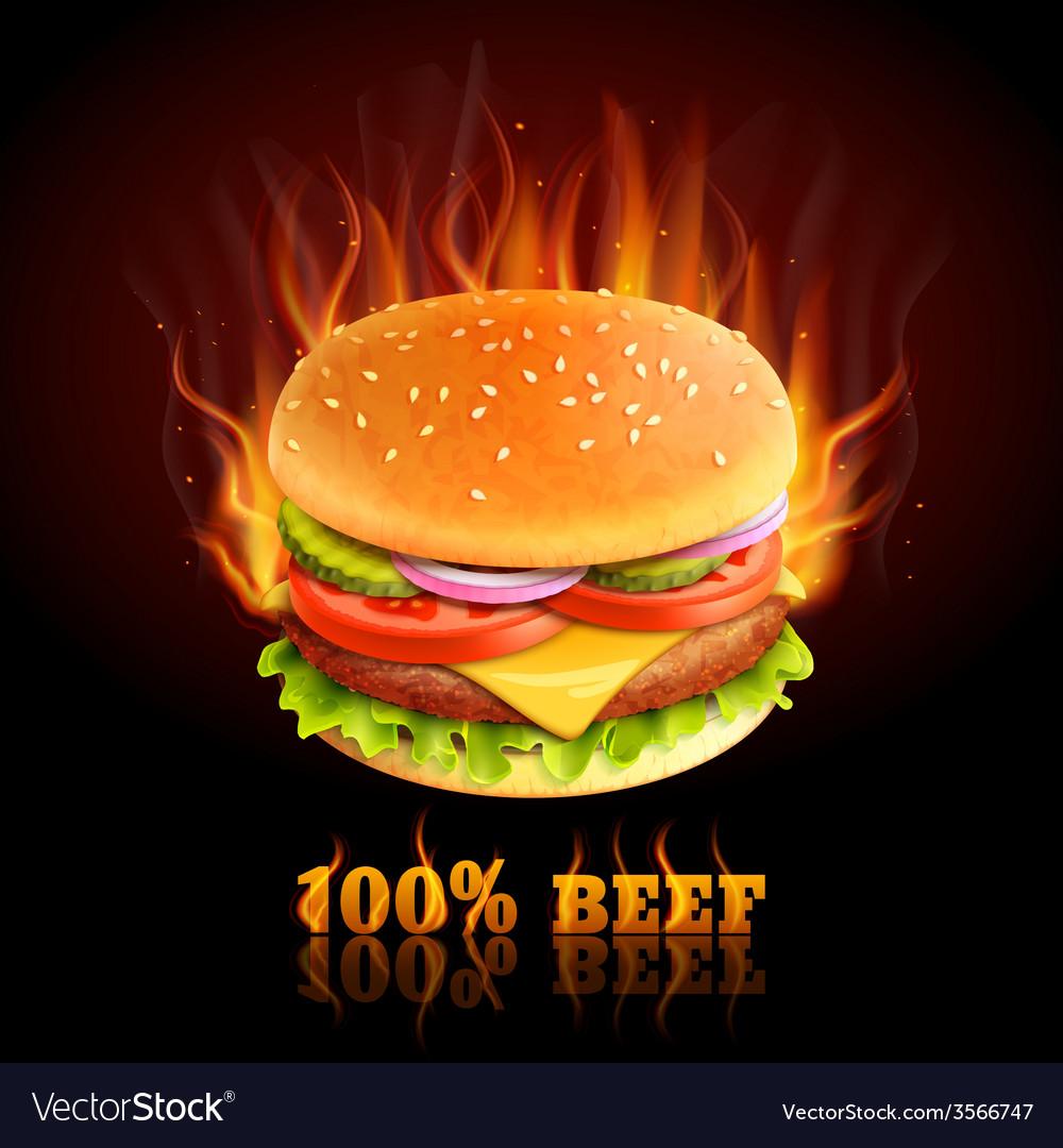 Beef hamburger background vector