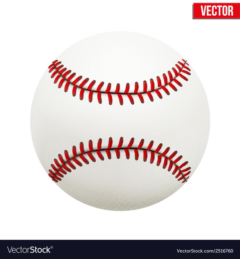 Baseball leather ball vector