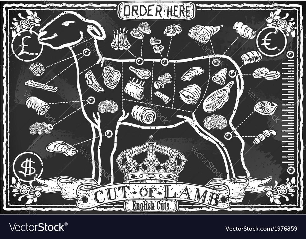 Cut of lamb on vintage blackboard vector