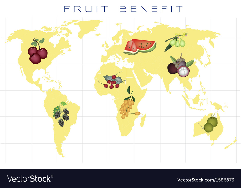 World map with fruits production and consumption vector