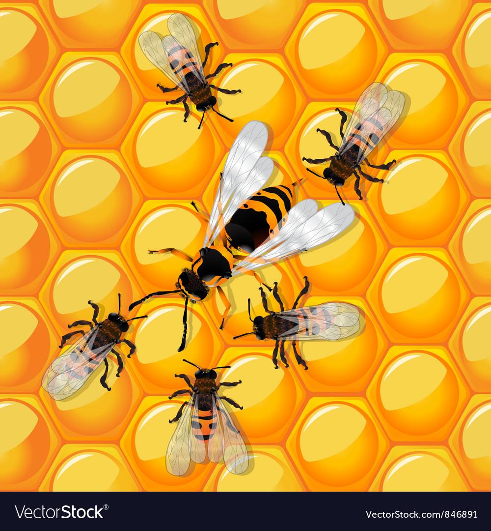 Bees and wasp vector