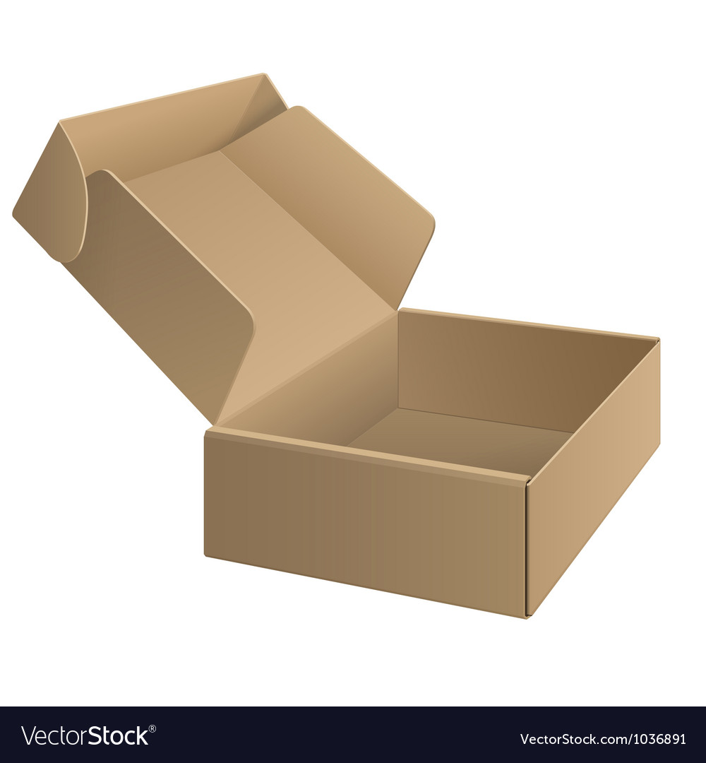 Package cardboard box opened vector