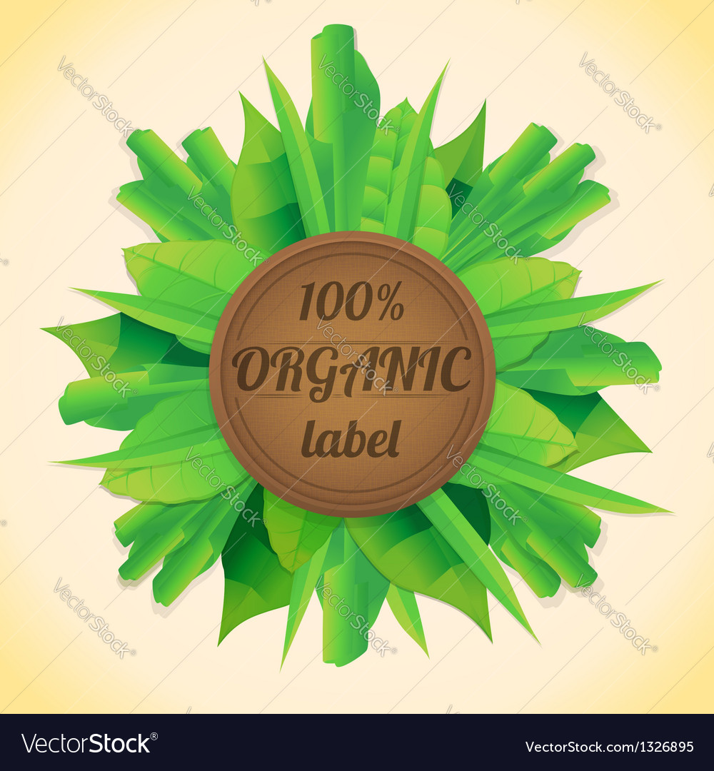 Organic leaves label vector