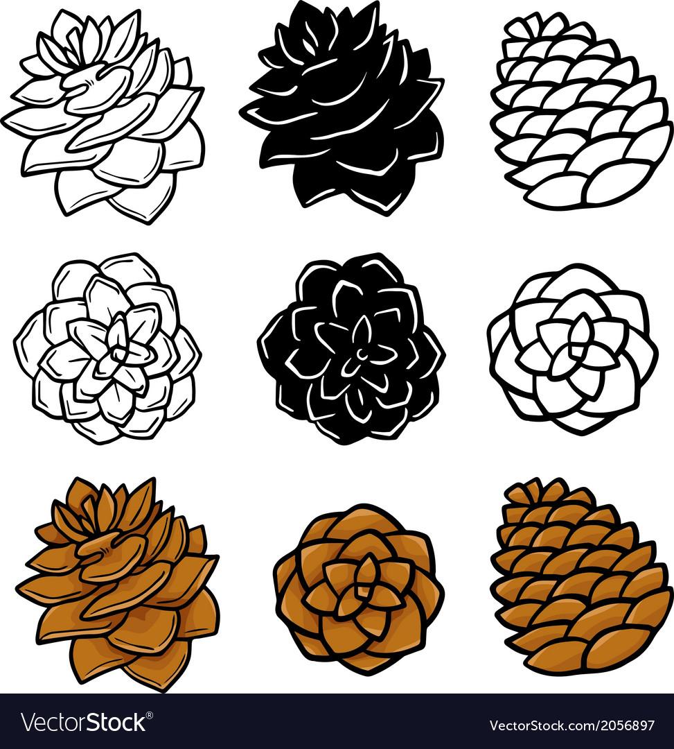 Set wit pinecones vector