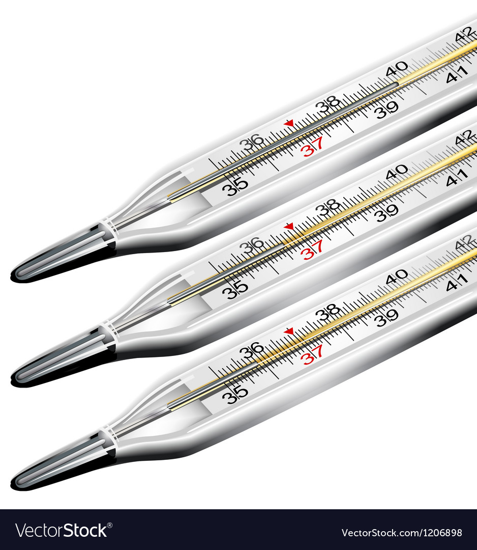 Medical thermometer vector