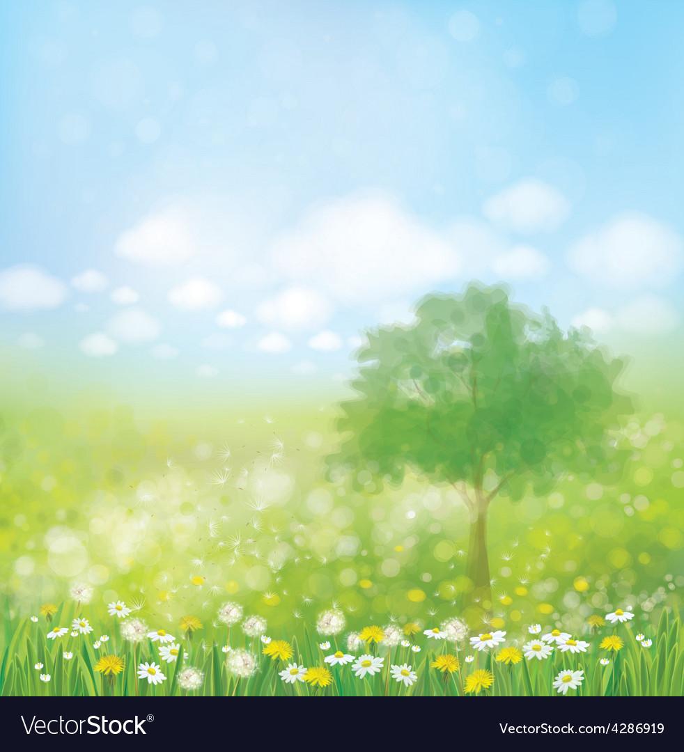Spring tree vector