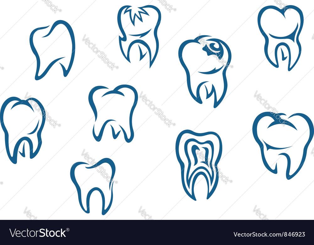 Human teeth set vector
