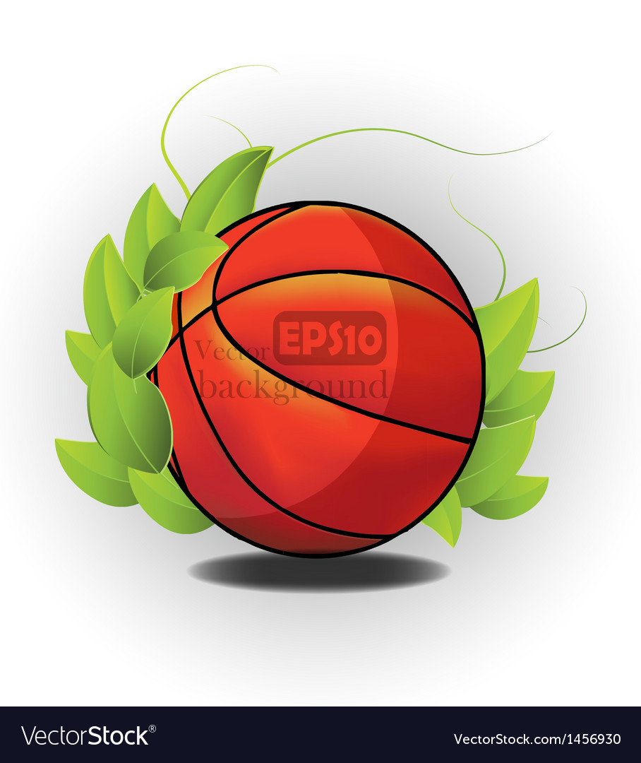 Sports ball design vector