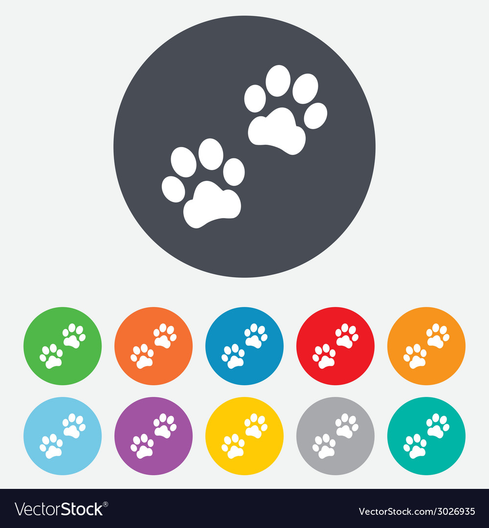 Paw sign icon dog pets steps symbol vector