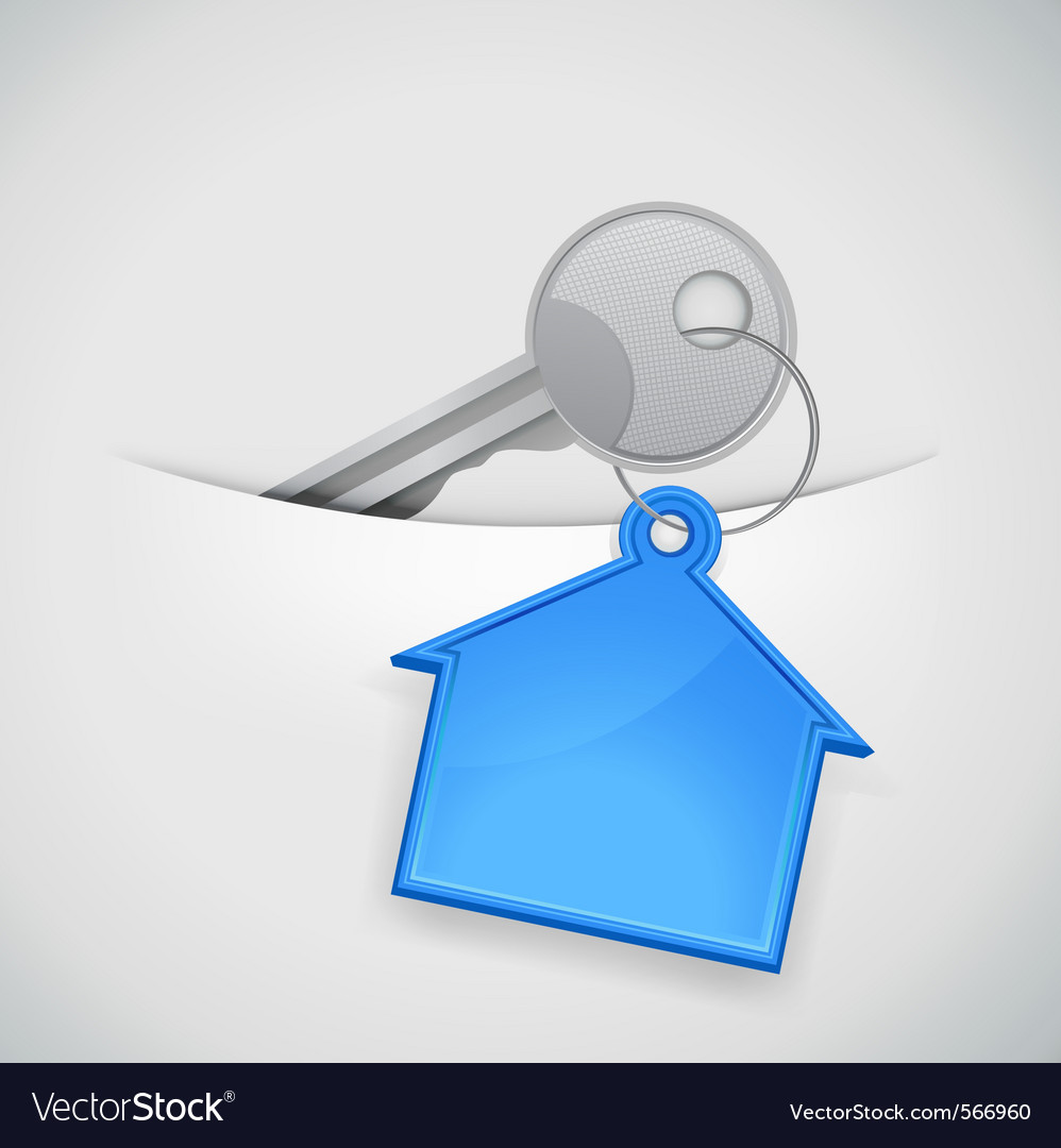 New house keys vector