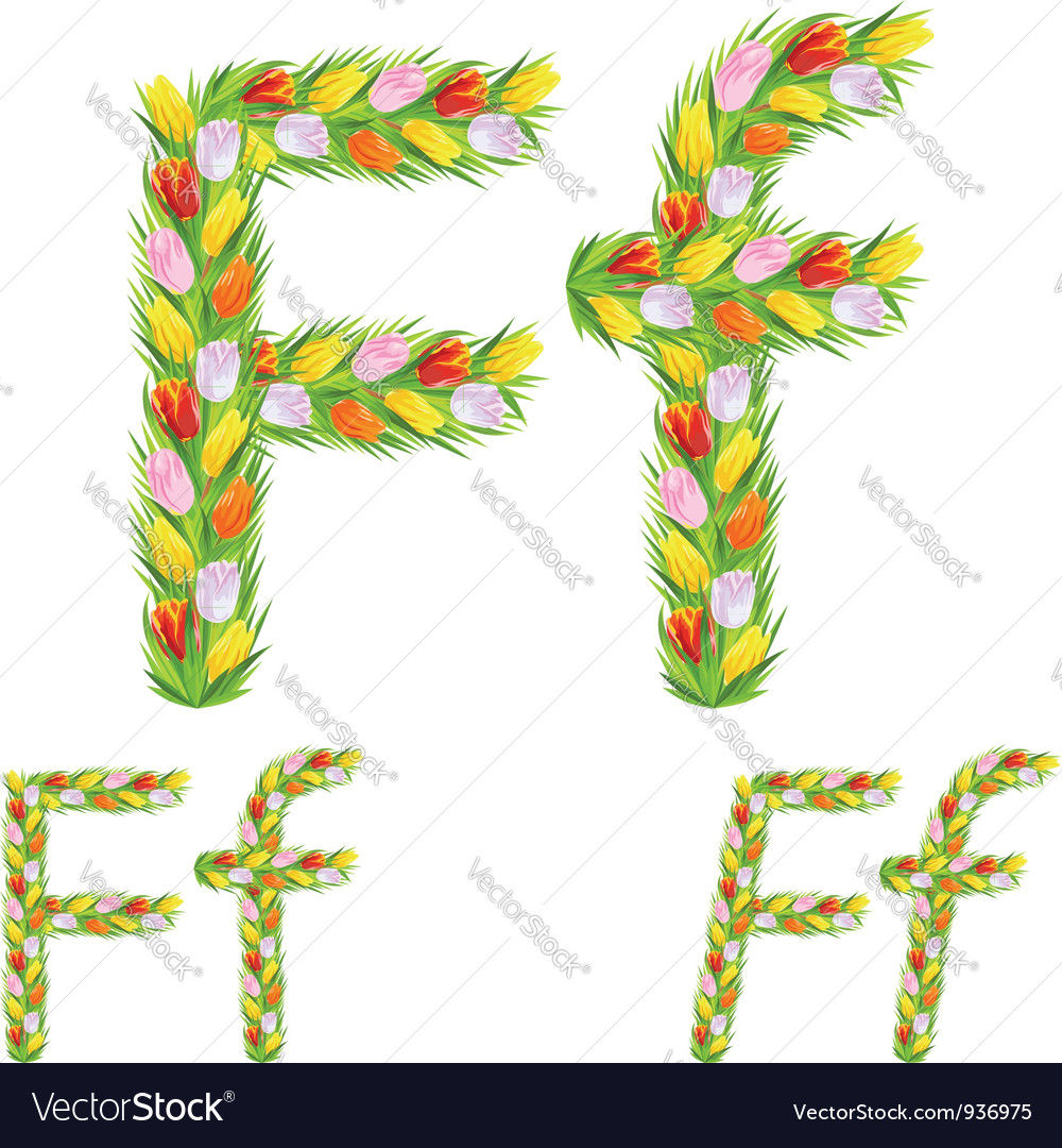 Font type letter f made from flower tulip vector