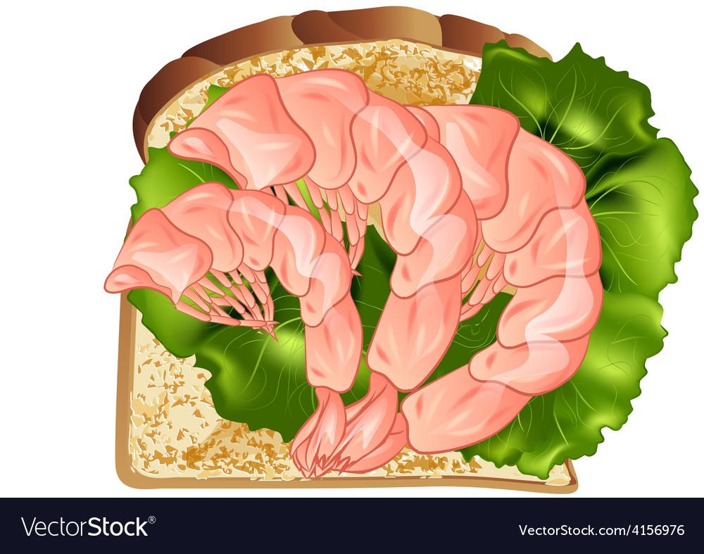 Prawn sandwich vector