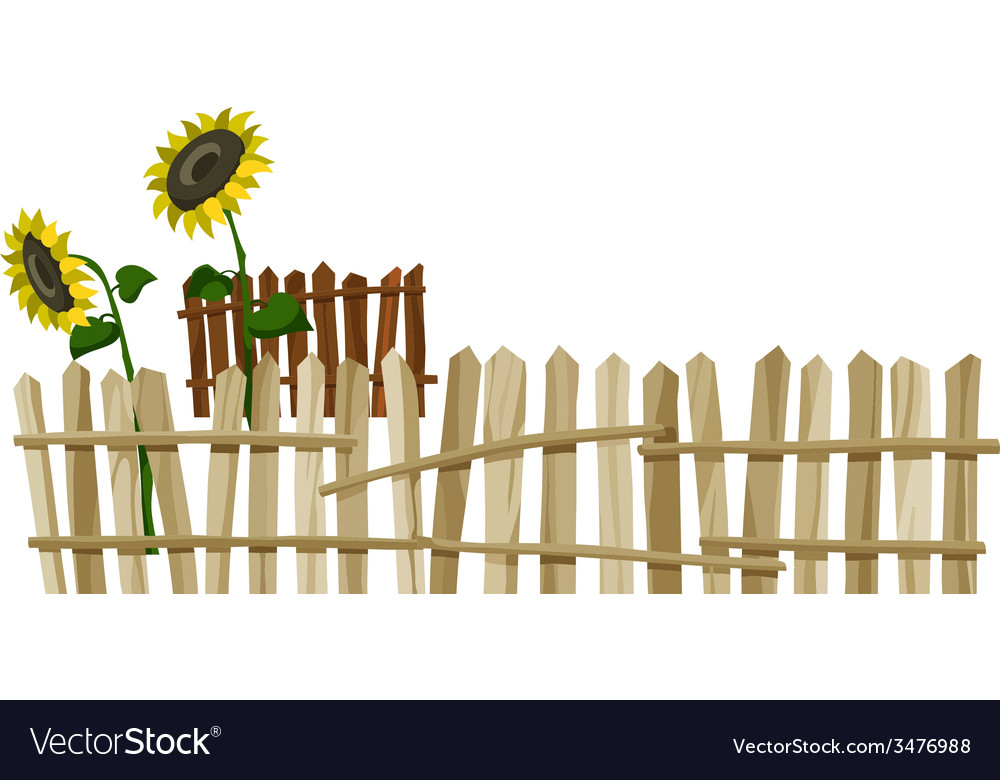 Curve wooden fence and flowers sunflower vector
