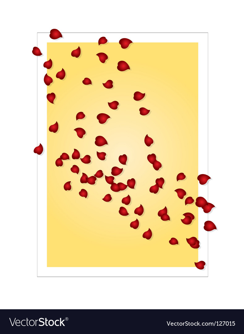 Valentines card with rose petals vector