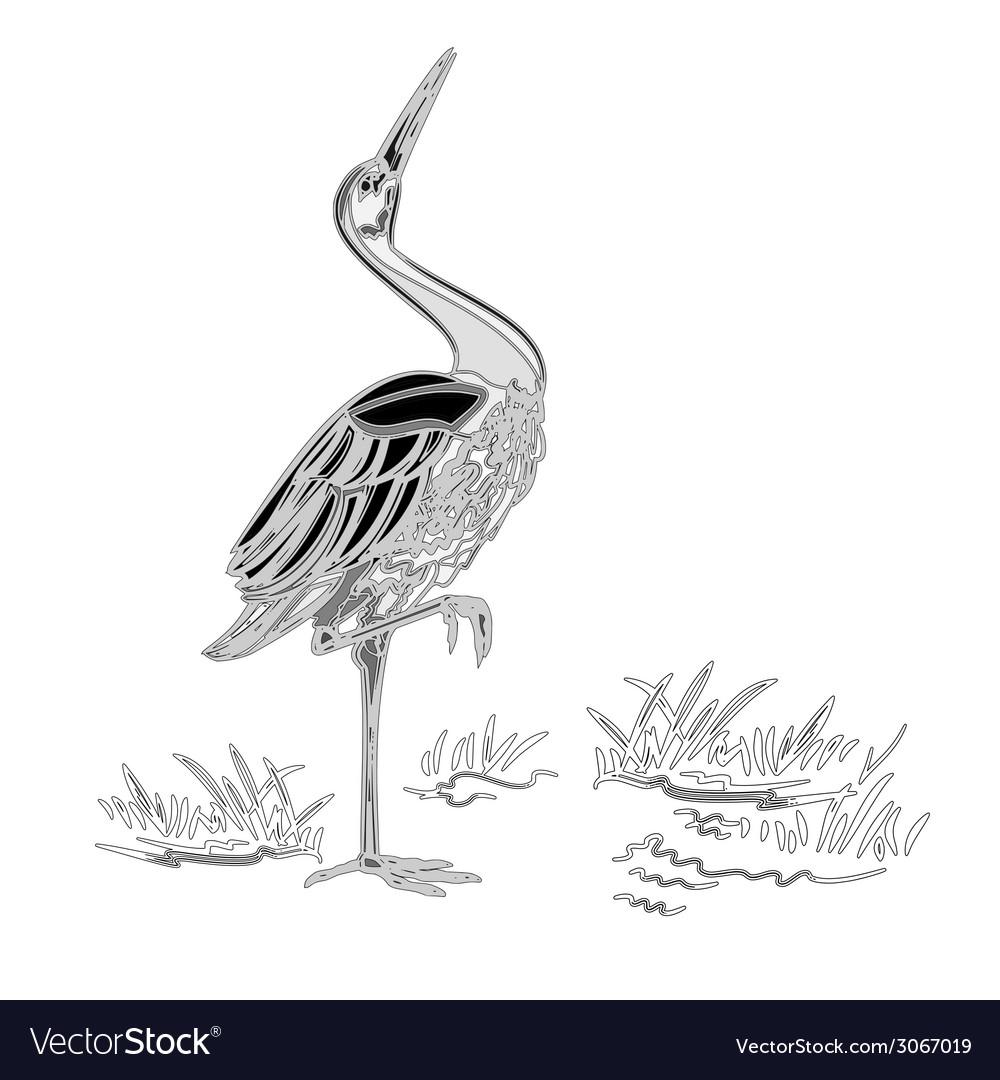 White stork water bird vintage engraving vector