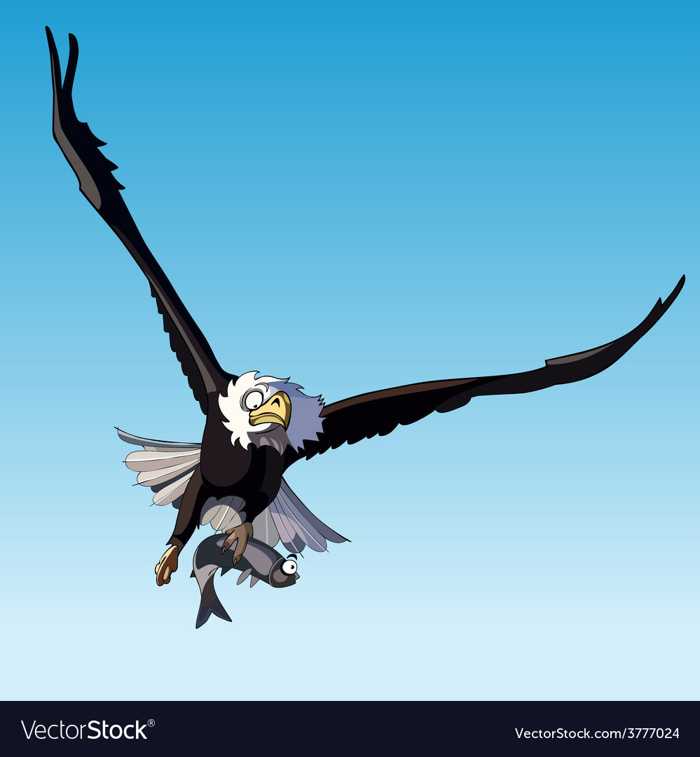 Bird eagle in flight holding a fish vector