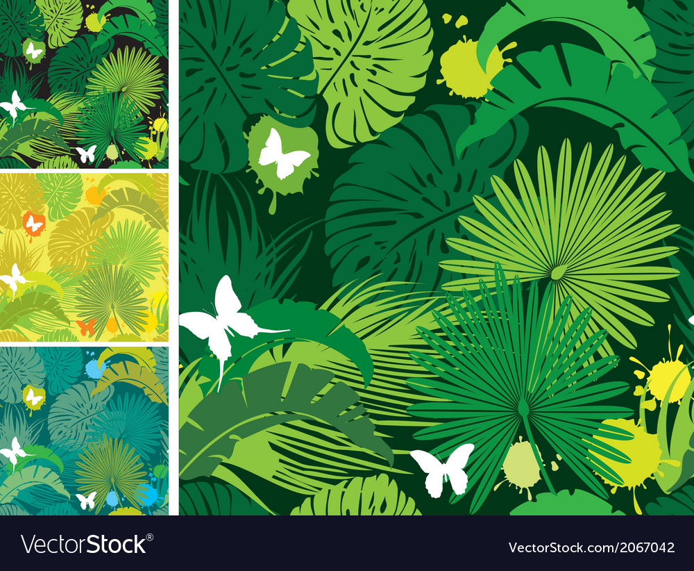 Set of seamless patterns with palm trees leaves an vector