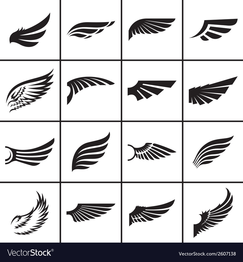 Wings design elements set in different styles vector