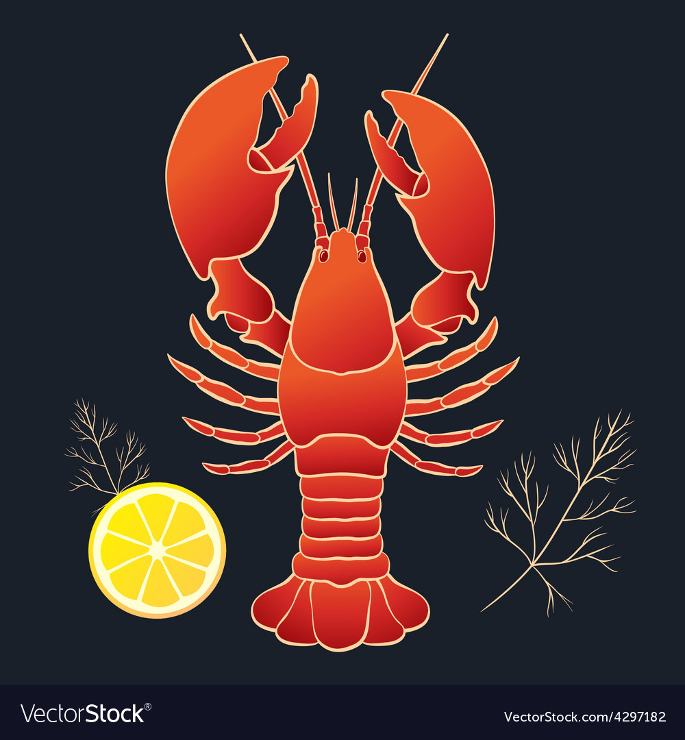 Lobster with lemon and dill vector